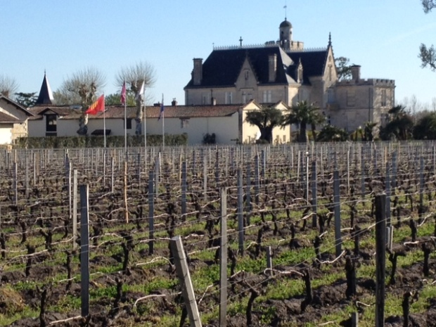 Vineyards at Ch. Pape-Clement