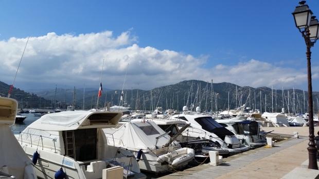 Corsica marina (1)