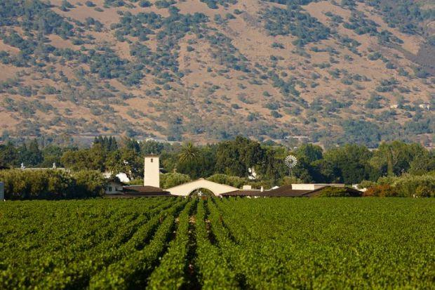 Standard Final JPG-Robert Mondavi Winery To Kalon Vineyard and Winery.jpg