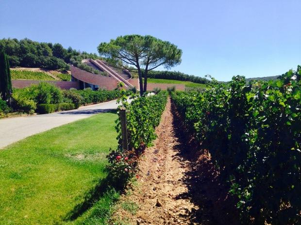 Petra Winery.jpg