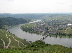 The Mosel Valley at Piesport with its wall of vines facing south over the town